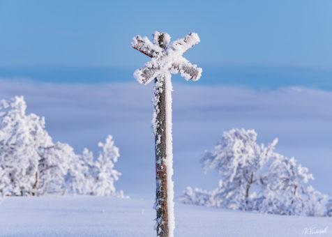 Vinter & vår